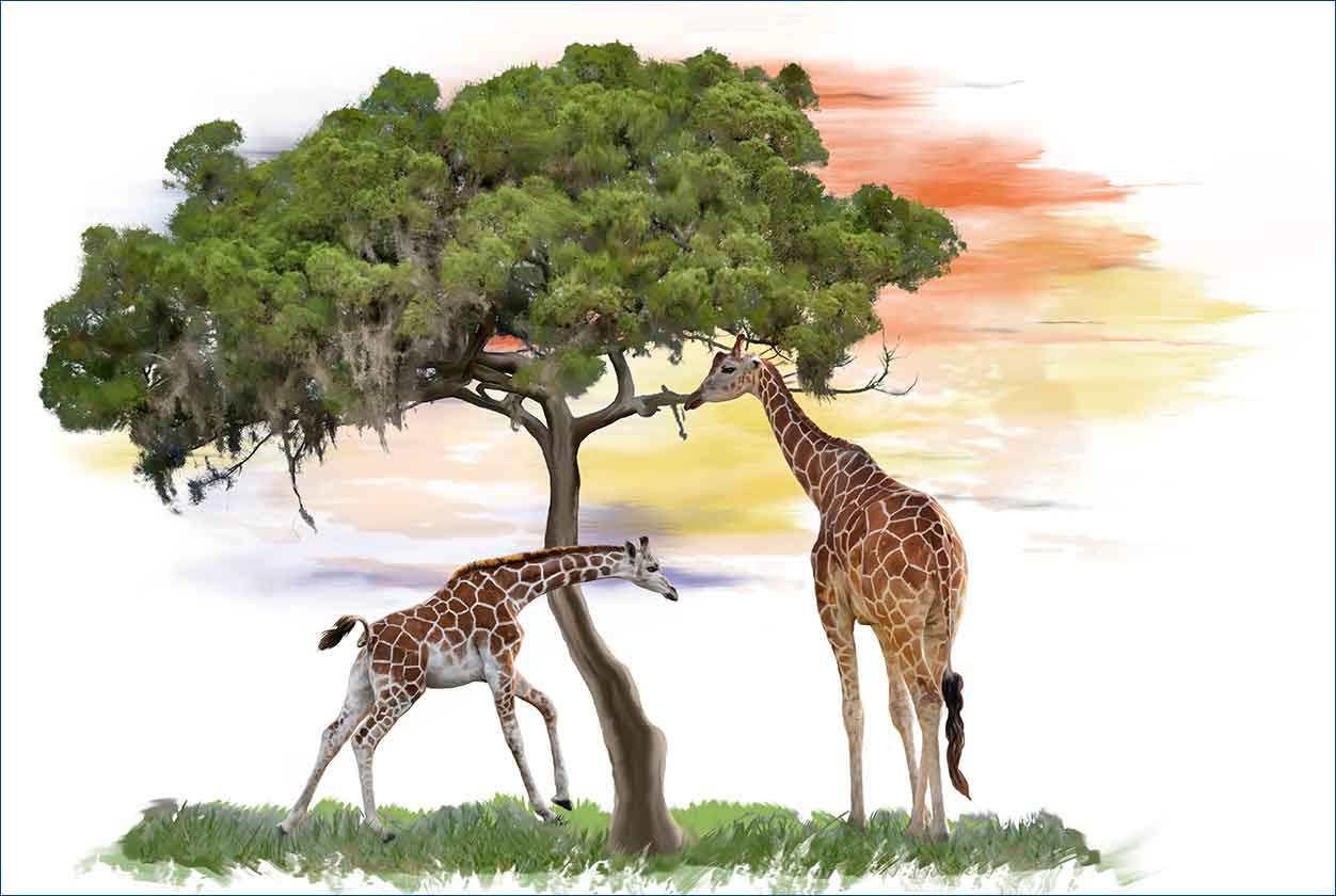 Giraffen nahe einem Baum