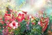 fruehlingsblumen-mehrfarbig-ISS_23394_00141